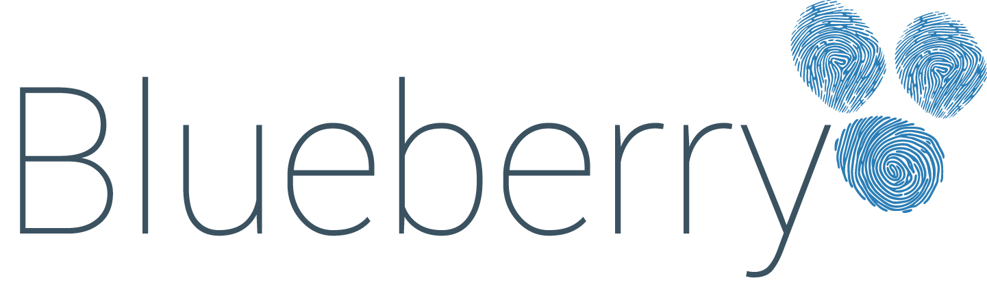 Blueberry logo